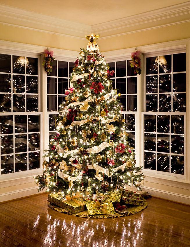 170035-654x850-Christmas-Tree-at-Night.jpg