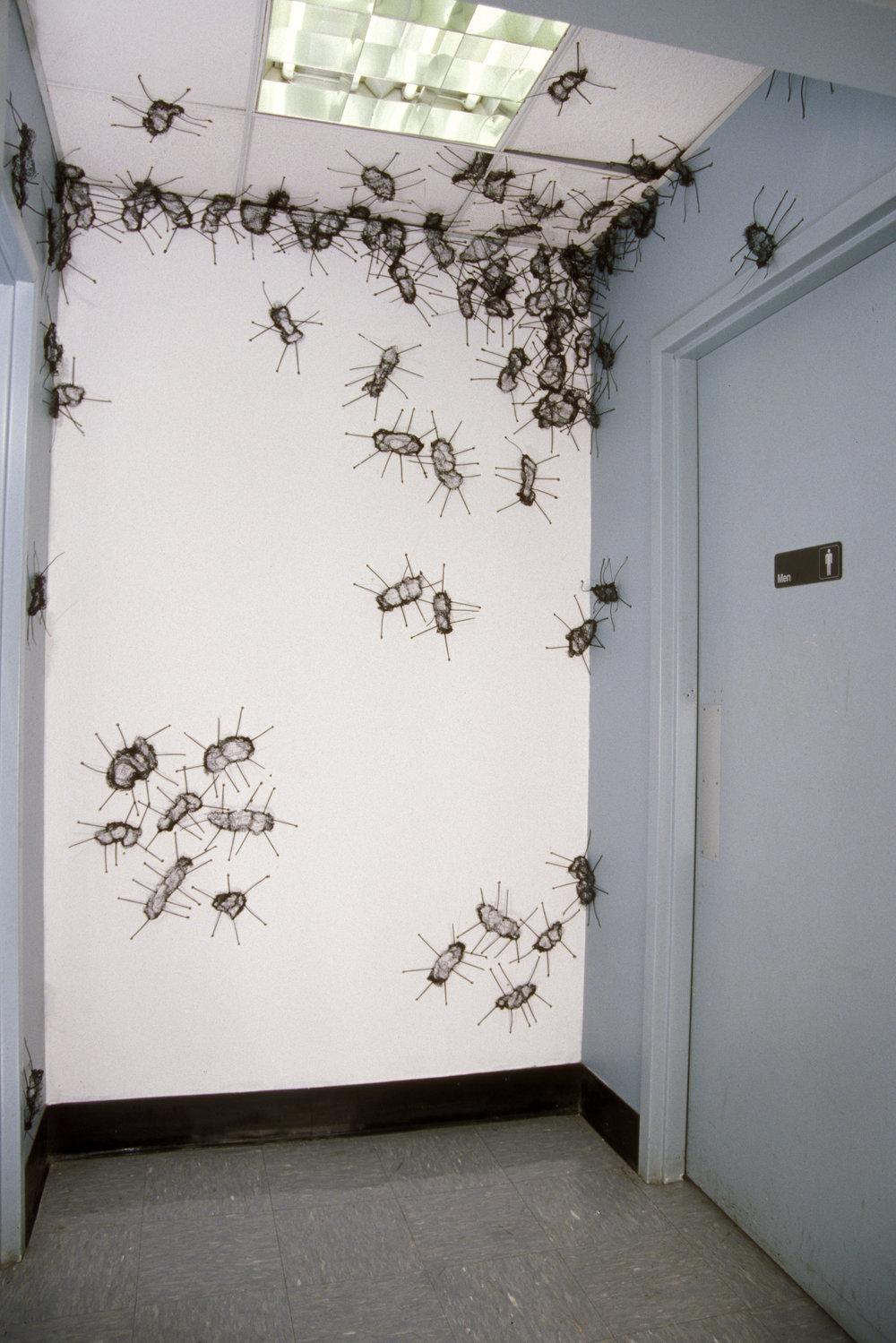Bugs   plastic  2006