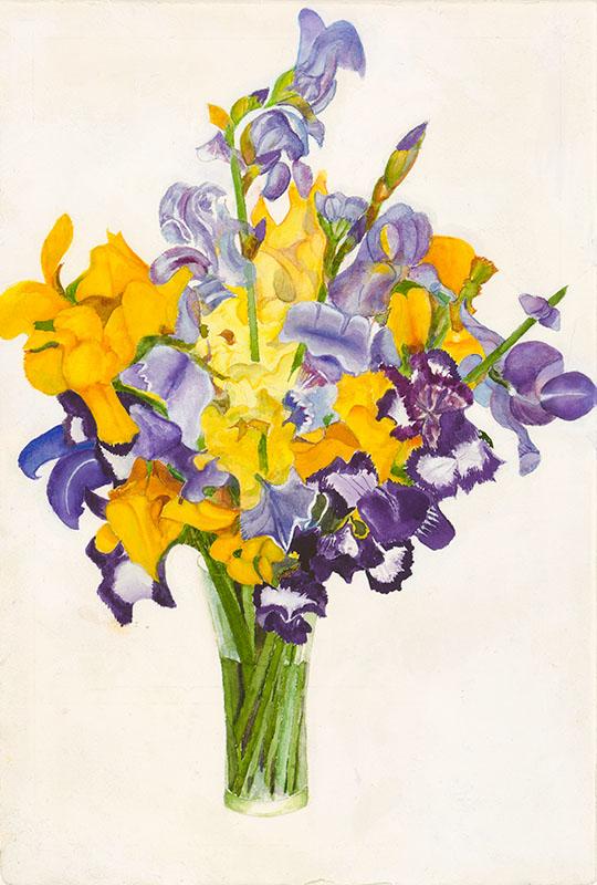 Cathys Irises (1).jpg