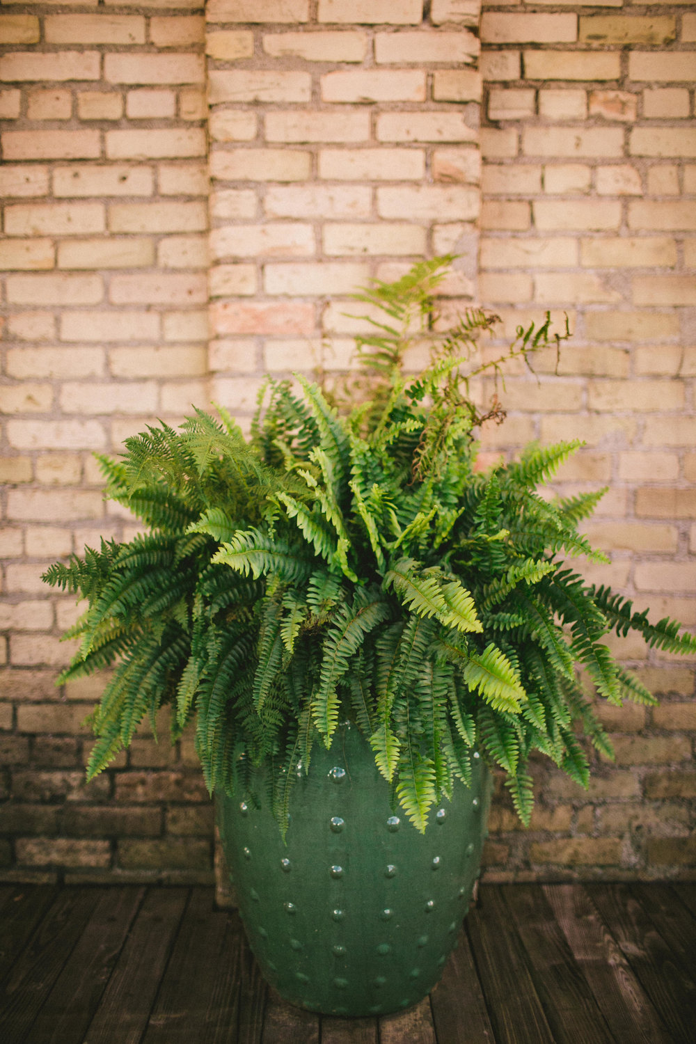 by Aimee Jobe Photography Luminary Fern Brainerd Wedding-84.jpg