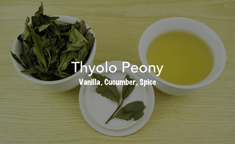 Thyolo Peony + Tasting Notes.png