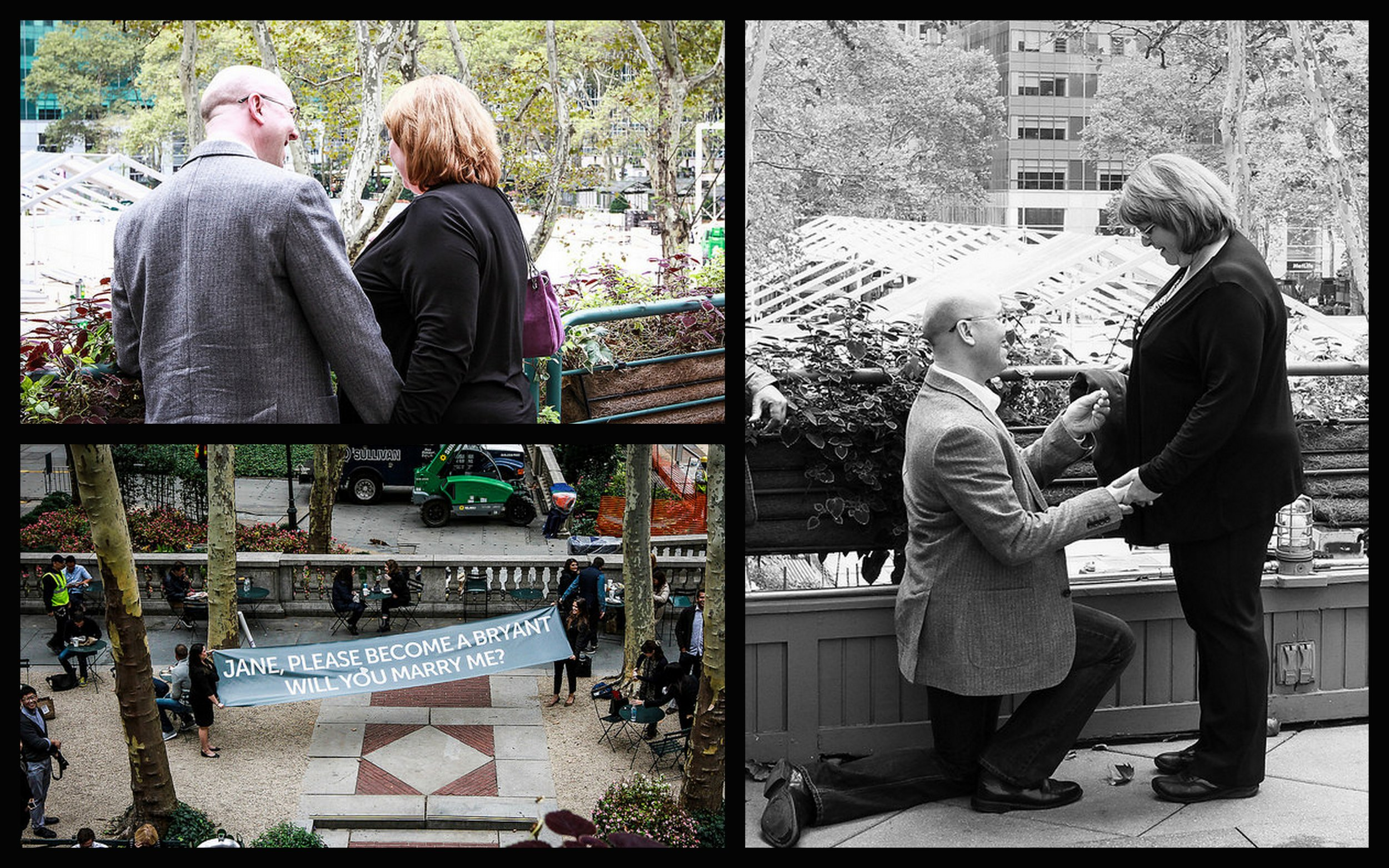 Bryant Park Proposal, Banner Proposal, Down on One Knee