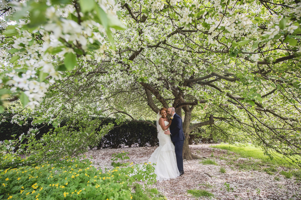 The perfect cherry blossom backdrop!  Photo by Heartfelt Studios.