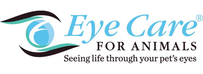 EyeCareLogo3Color.jpg