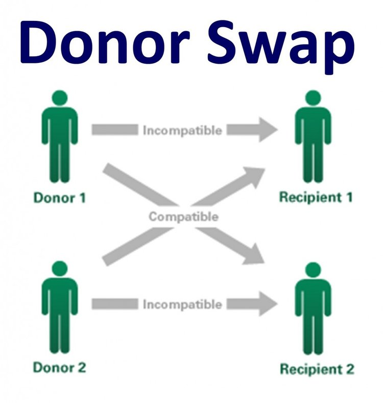 Share, Swap, Gift is interactive & reflects the language of organ donation.
