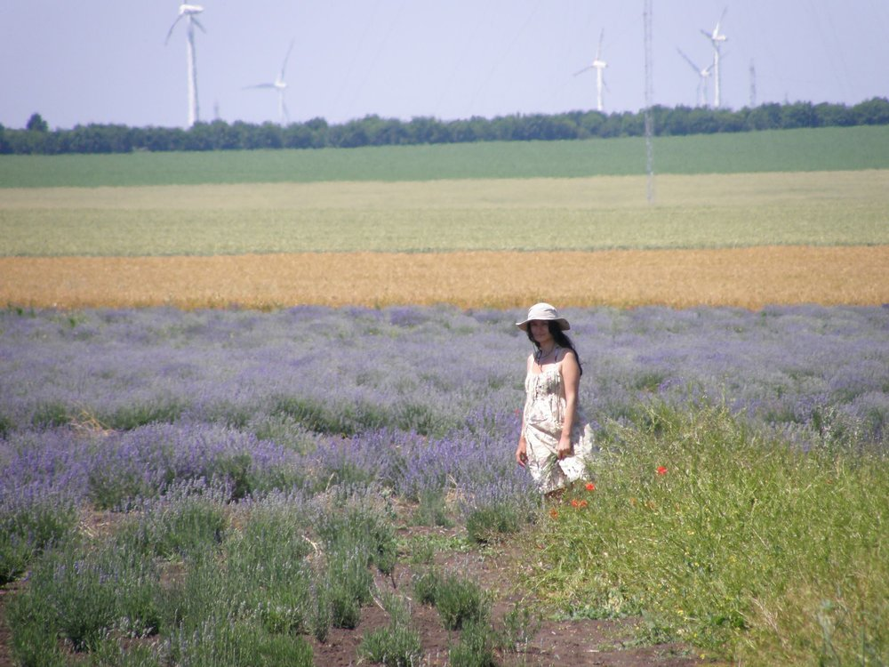 Here I am in Bulgaria, 2011, love struck with lavender.