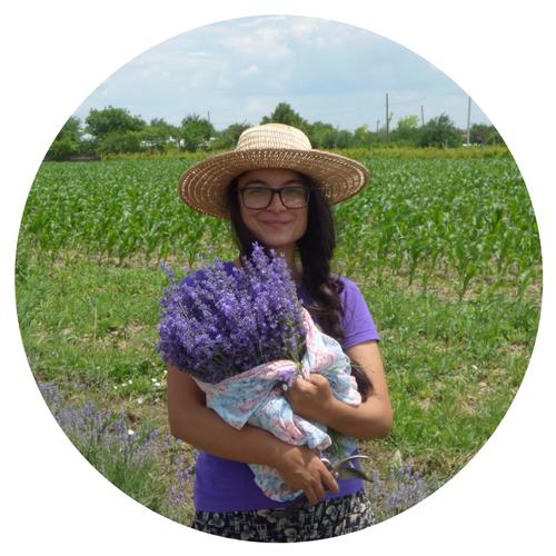 lavender farm farmer Zana Florilor Romania Vrancea.png
