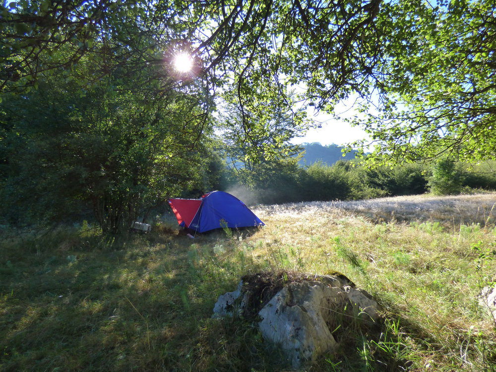 Waking up early morning in a pristine field