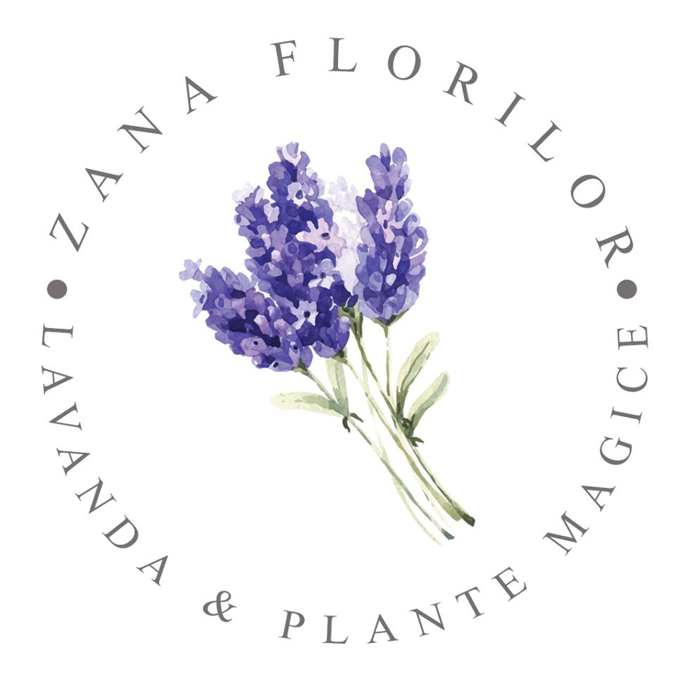 Zana Florilor Lavender Farm