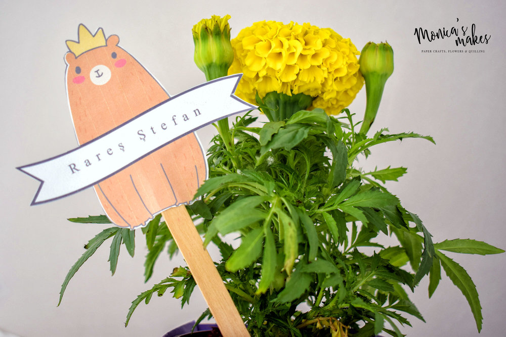 Potted Plant Favors Bring Color to a Garden Themed Party - Read more at www.monicabadiu.com