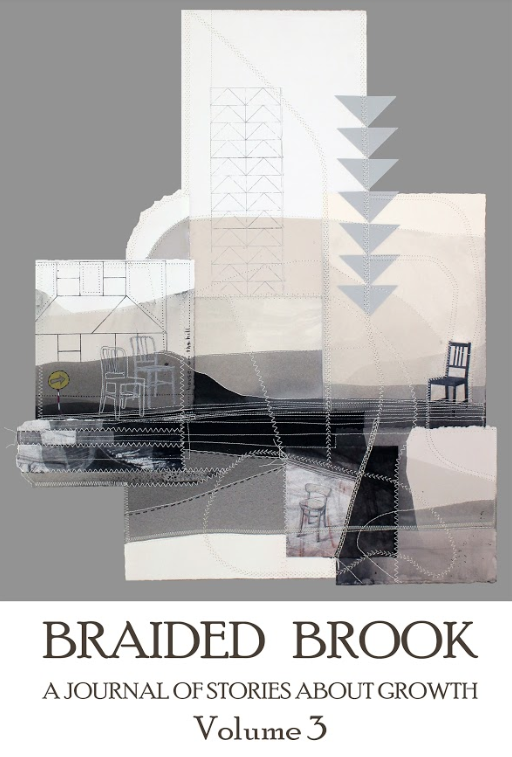braided_brook_volume_3