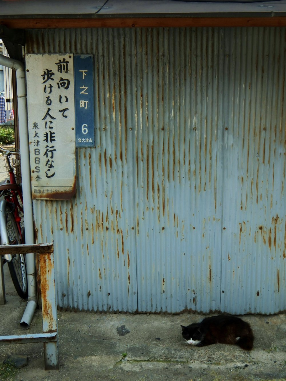 architravel1971 :     Izumiostu,Osaka,Japan   2014