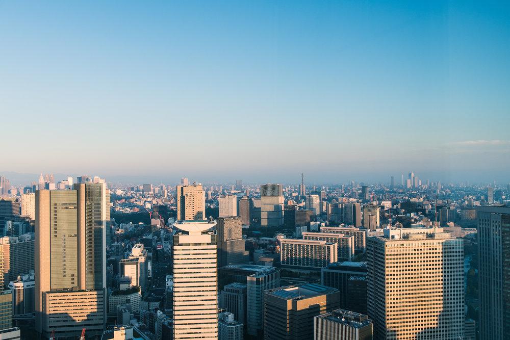 Tokyo_Fun-73.jpg