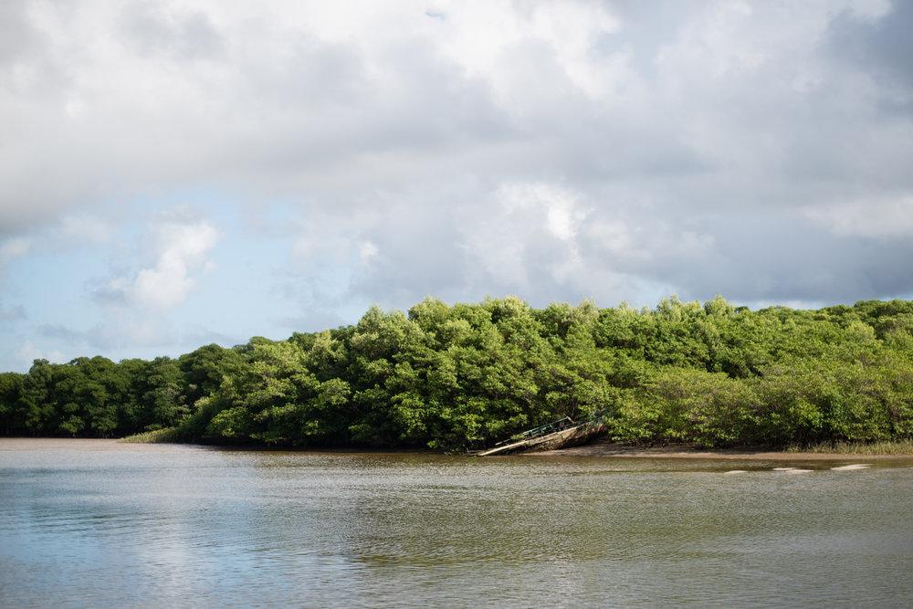 Bahia-87.jpg