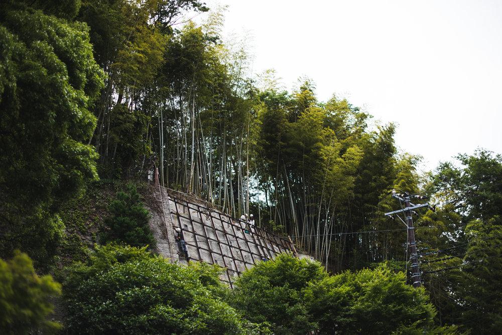Tokyo2015-326.jpg