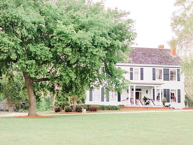 Looking forward to my shoots at Early Hill this fall! What a magical location! This 200 year old, southern homestead is beautiful and timeless. It's surrounded by pastures, a pecan orchard and lined with white fencing.  From the charming white barn, to the horses, and pond, it's all picture perfect!