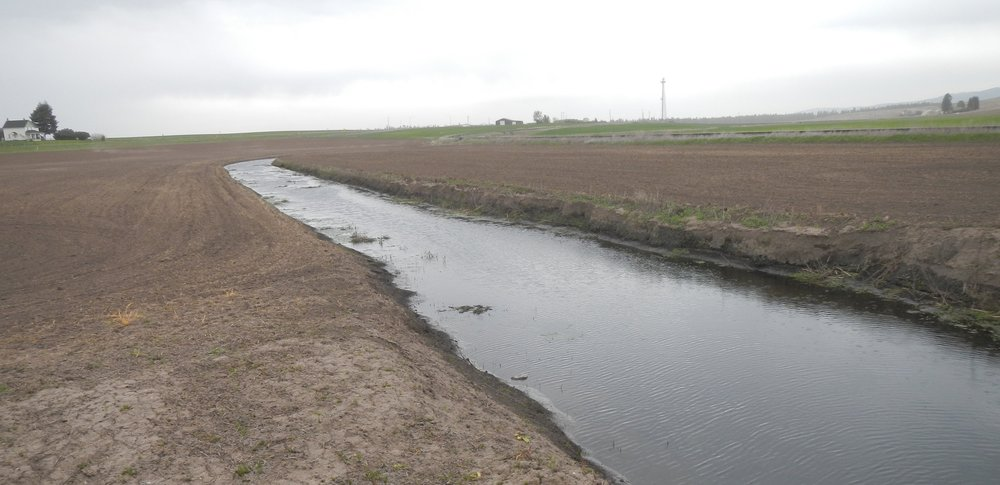 Tilling crops to the water's edge leaves the tributaries exposed to muddy runoff, pesticides and herbicides.