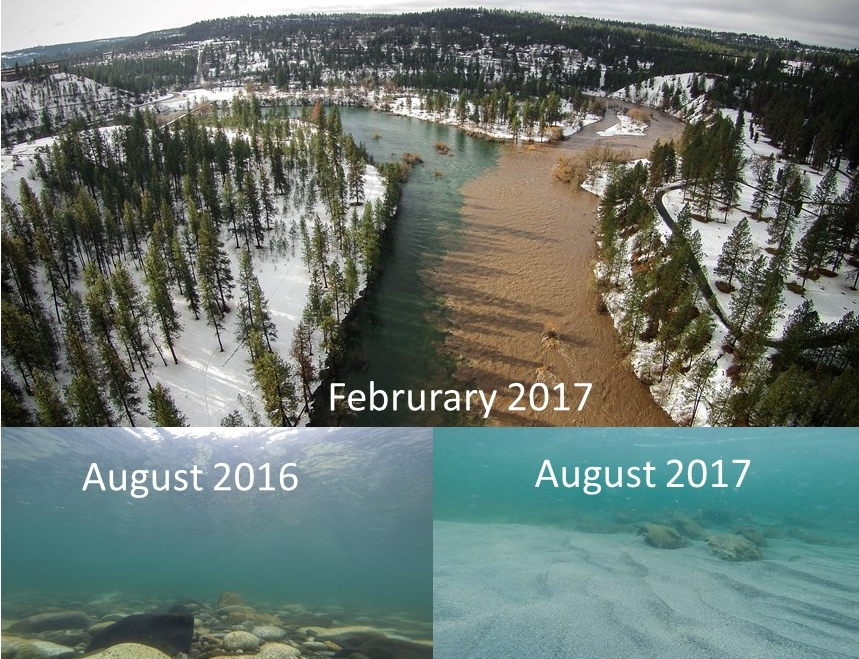 Flooding in winter of 2016-17 on Hangman Creek transported tons of sediment and covered substrate in the Spokane River that fish and insects depend on for spawning and habitat.   Photos Cutboard Studios