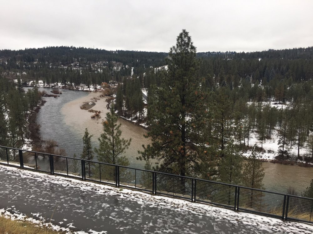 Sediment from Hangman Creek pollutes the Spokane River 1/9/18