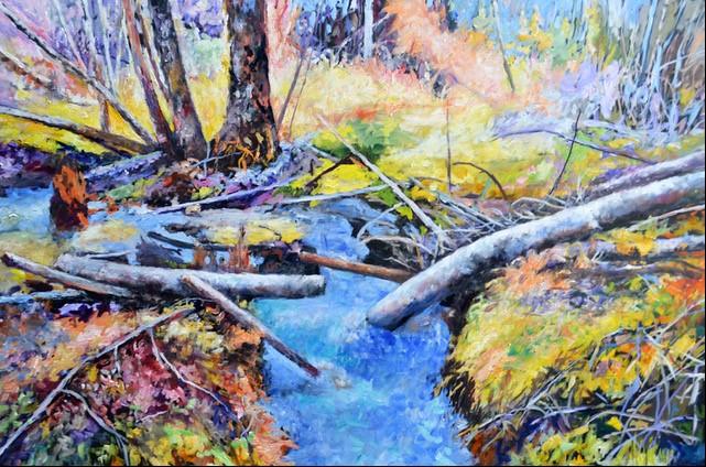 Iller Creek Spring Runoff