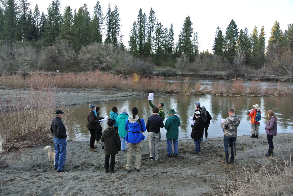 "The Spokane Riverkeeper, Jerry White Jr., leads a ""fish walk"" along Hangman Creek."