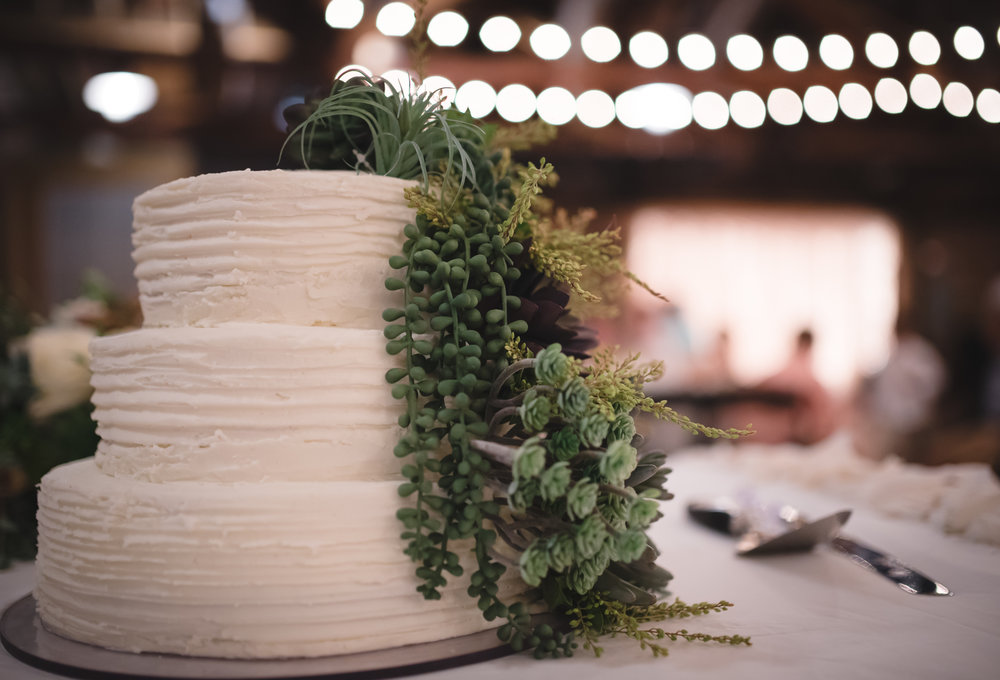 succulent-wedding-cake.jpg