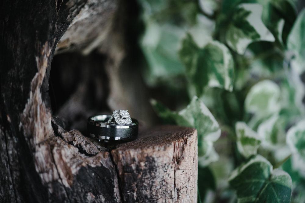 max-meadows-virginia-wedding-photographer.jpg