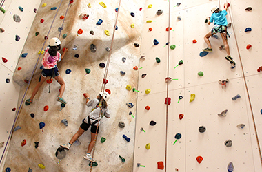 Climbing Wall — Camp Beech Cliff
