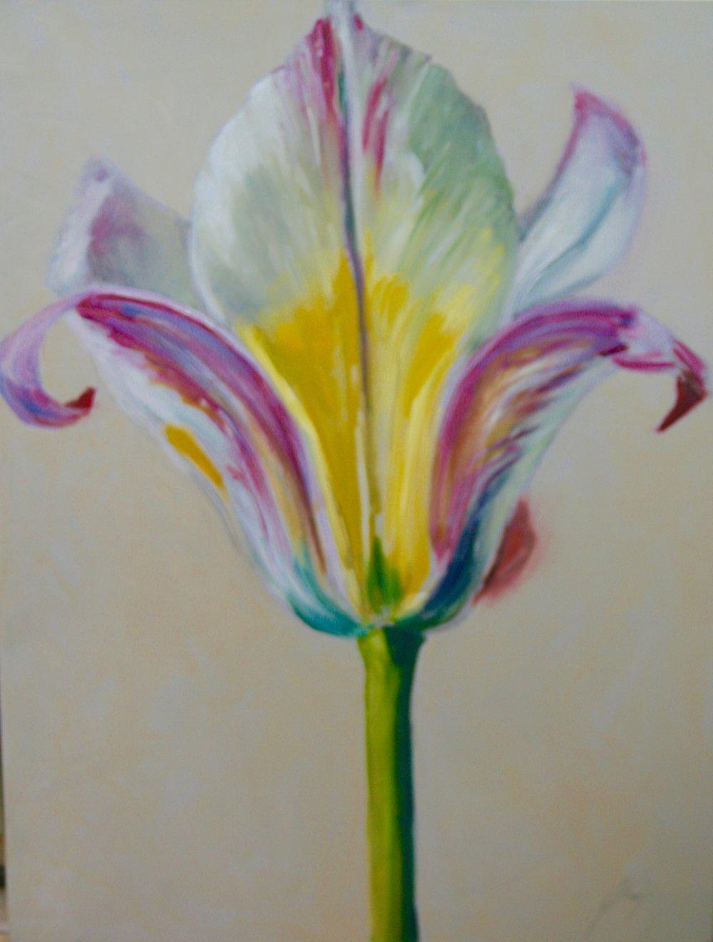 IMG_0001.jpg Tulipa Turkestanica.jpg