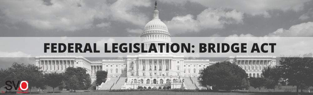Federal Legislation: BRIDGE Act