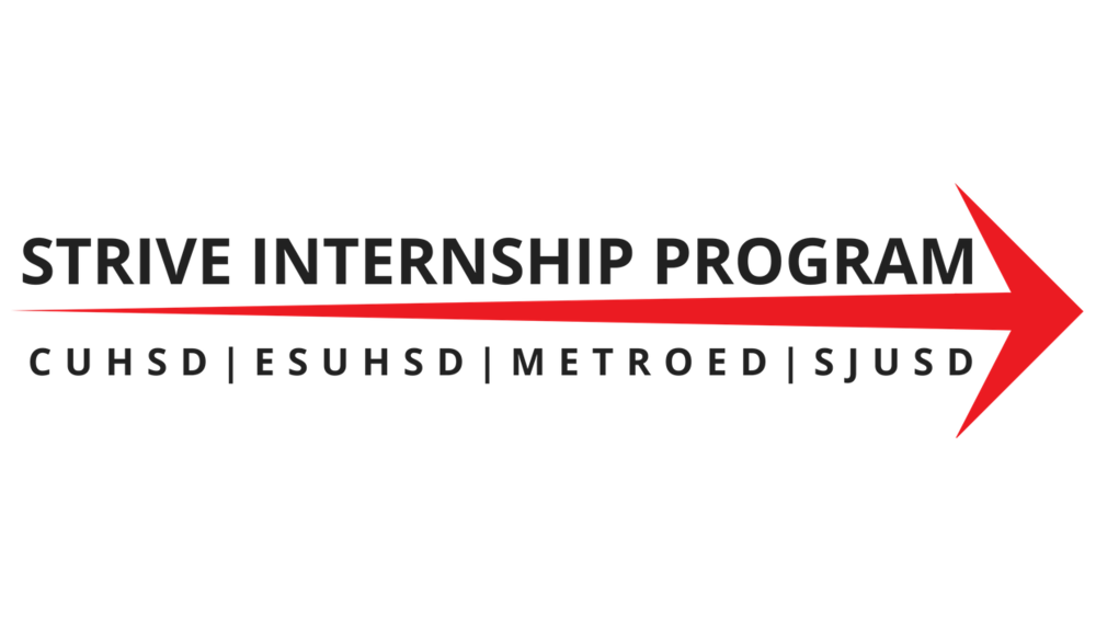 2017 Strive Summer Internship Program