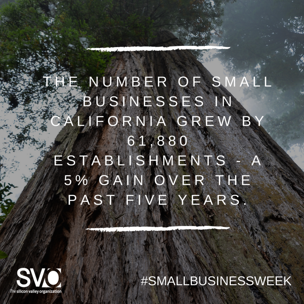 #SmallBusinessWeek (2).png