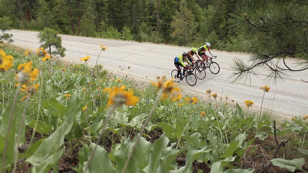 Cycling Green Mountain Road copy.jpg