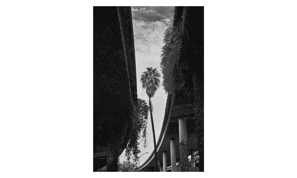 "California 3 , archival ink print, 20"" x 26"", $1000    Contact us for purchase"
