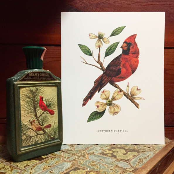 An original illustration of a  cardinal perched on a dogwood branch.