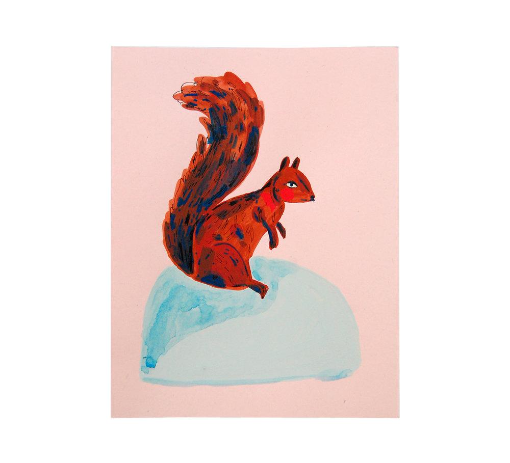 Copy of Squirrel I