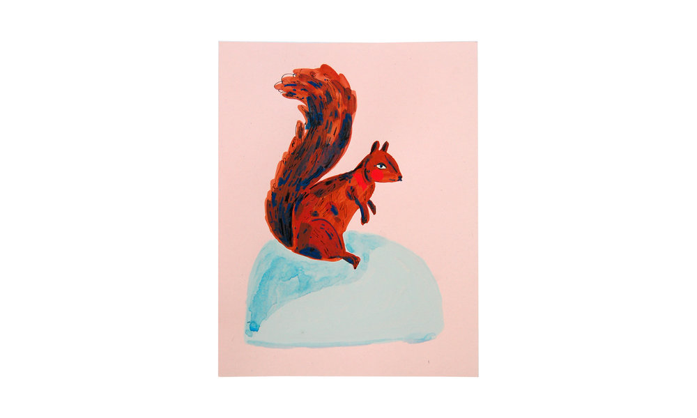 "Squirrel I,  ink, watercolor and gouache on paper, 8.5"" x 11"", $250    Contact us for purchase"