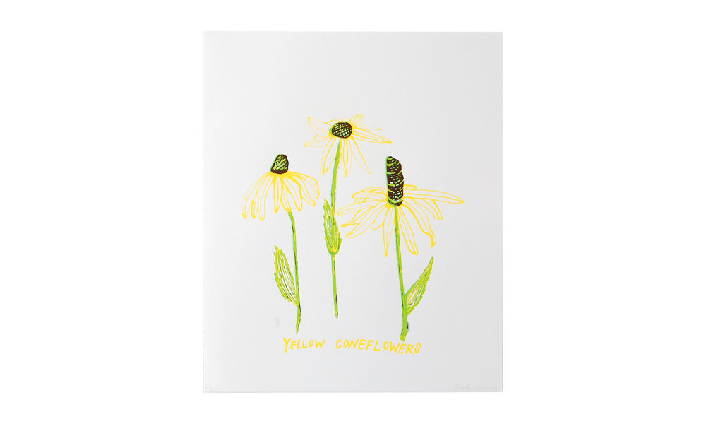 """Yellow Coneflowers, screenprint, 12"""" x 16"""" (framed), $100    Contact us for purchase"""