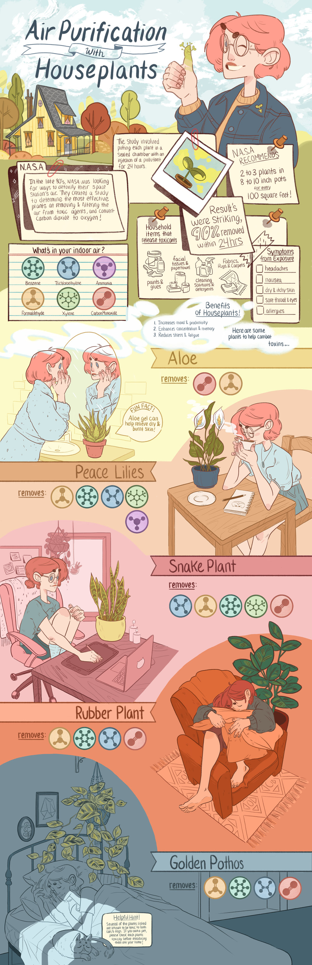 Air purification infographic.jpg