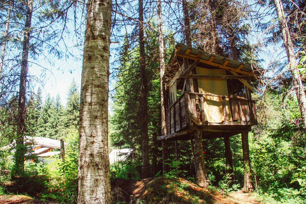 Treehouse / Guest house.