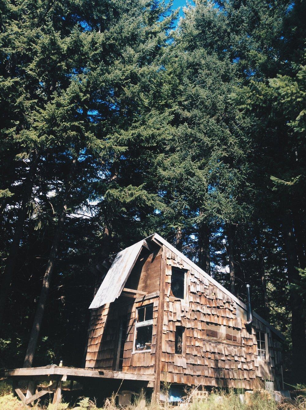 Erin's cabin.