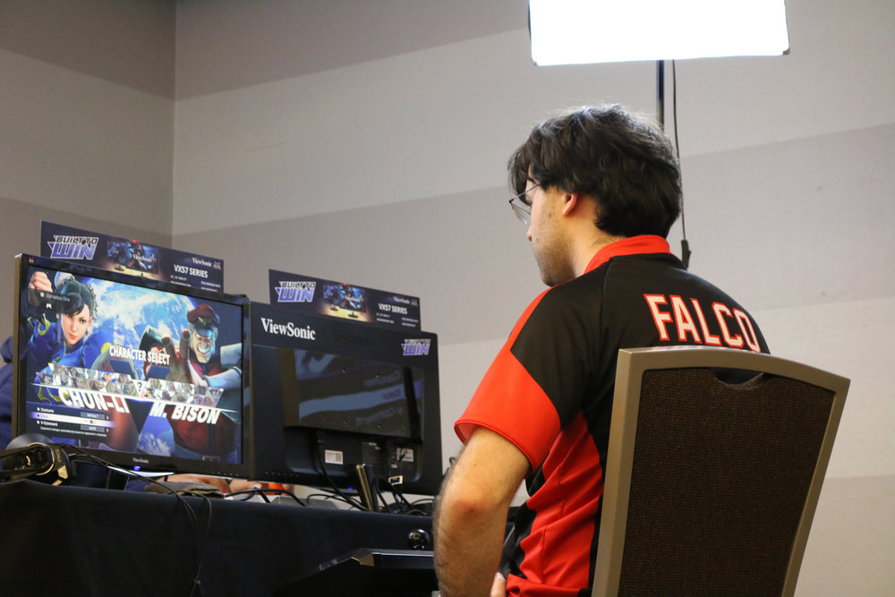 Dark Sided Fighting Game Player Falco