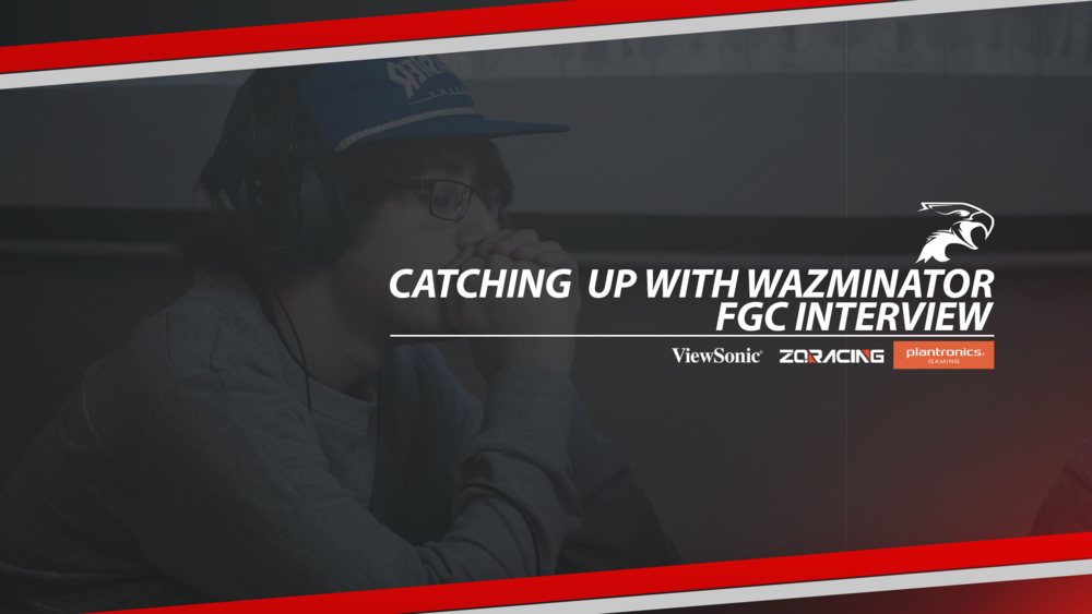 Dark Sided Fighting Game Player Wazminator