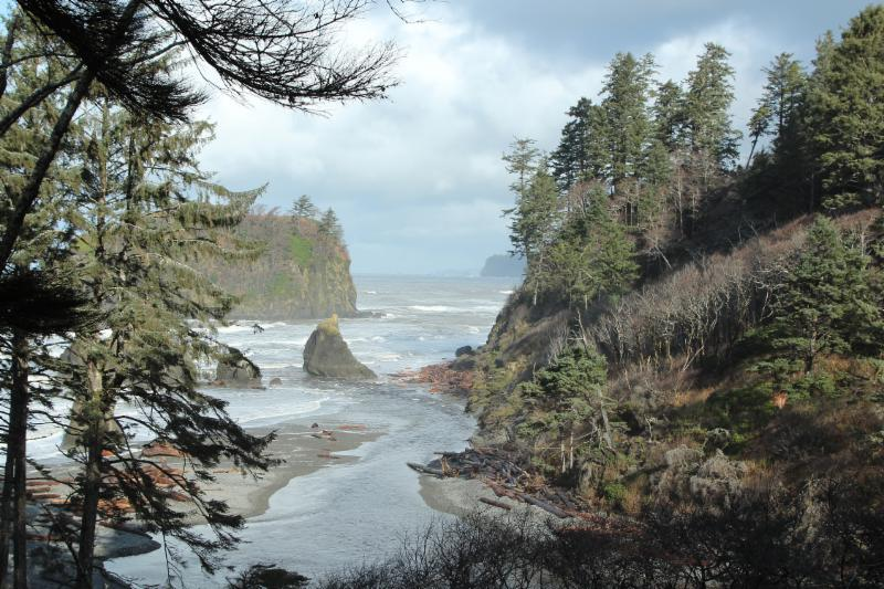 """Ruby Beach Oympic National Park Washington"" by Don Merwin©"