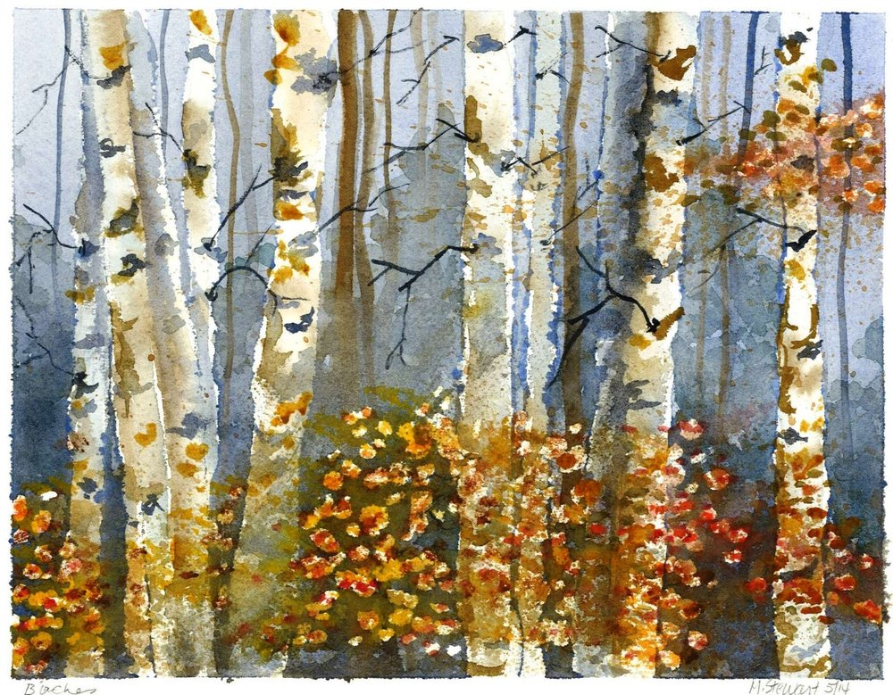 """Birches"" by Mary Stewart©"