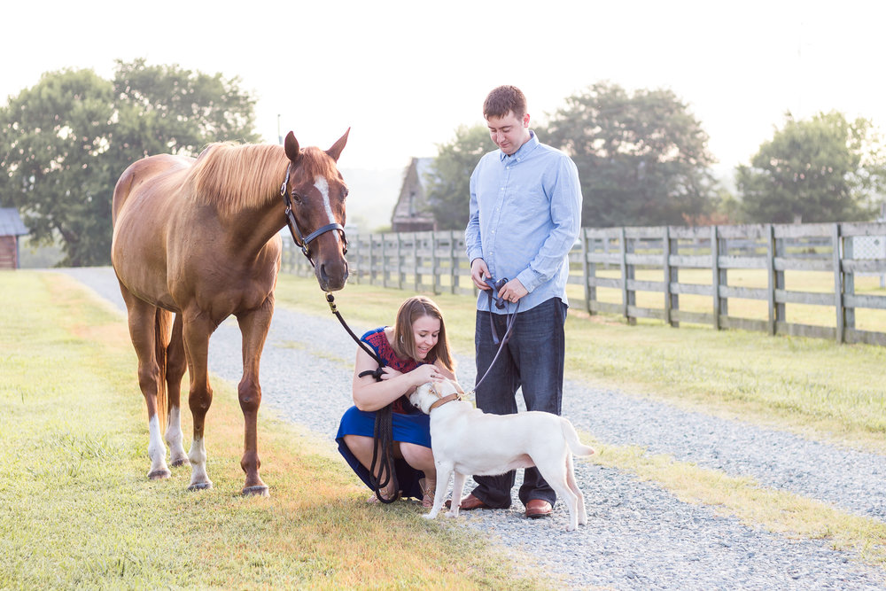 Family Horse Farm Session Laura Siegle Photography Llc