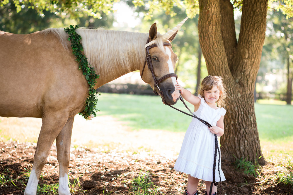 Richmond Virginia Equine Photography Unicorn Session