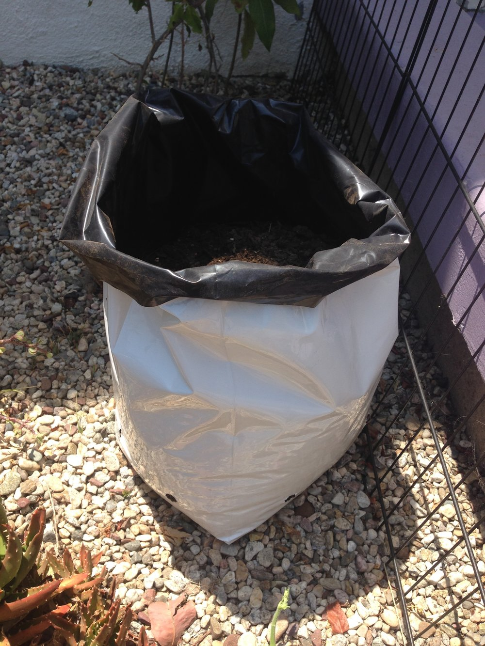 5 GALLON GROWING BAG
