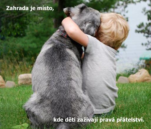 prátelství.jpg