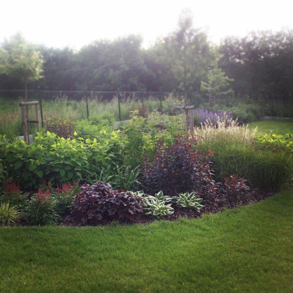 Záhon osázený vlhkomilnými rostlinami nad vsakem vody. Daří se tam hortenziím, vrbám a trvalkám.